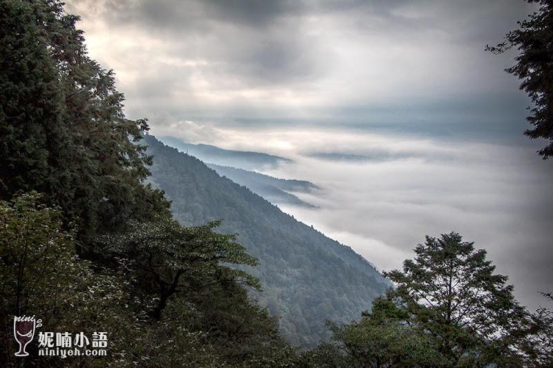 【宜蘭大同】太平山見晴懷古步道。世界級景點在台灣