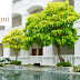 Inilah Hotel-Hotel Mewah di Cepu Blora