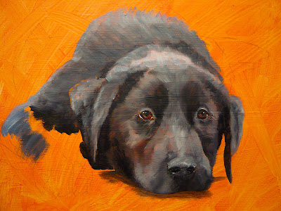 work-in-progress photo of labrador oil painting