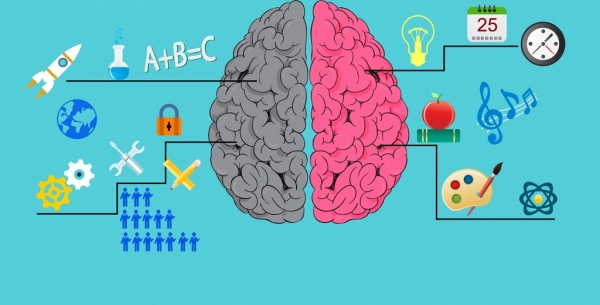 Working brain infographic multicolored flat icons decor Free vector