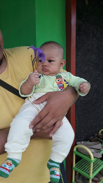Julio's Diary 4 : Baby Spa Pertamaku