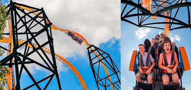 Tigris: a nova montanha-russa do Busch Gardens em Orlando