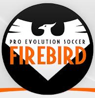 update firebird 2019