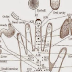 Each Finger Is Connected To An Internal Organ, Press Them For 5 Seconds To Get Rid Of Pain