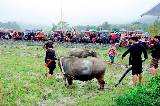 Tuyen Quang ethnic groups observe Long Tong festival