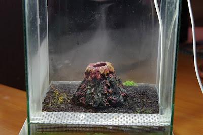 terrarium mech