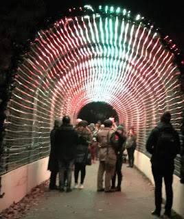 Pic of light tunnel with visitors standing inside taking pictures and videos