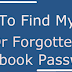 How Do I Find Out My Facebook Password