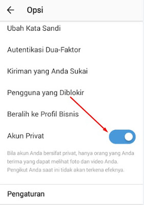 private akun instagram