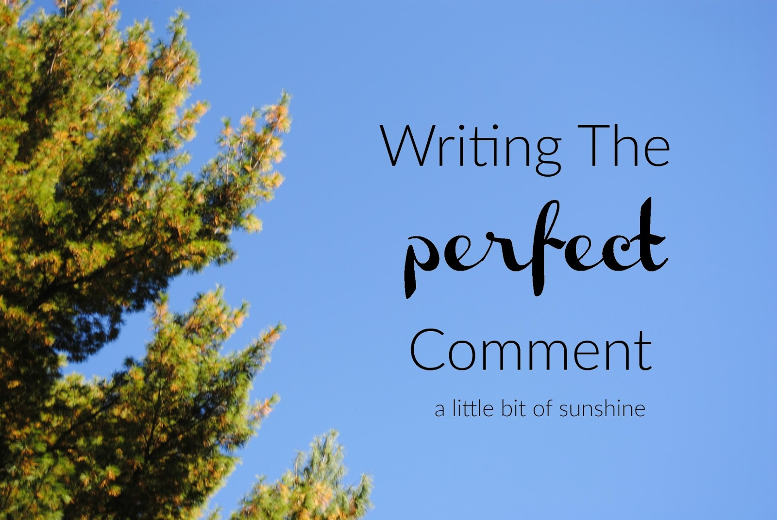 bookmarkd: How To: Write The Perfect Comment