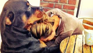 Γιατί τα σκυλιά ζουν λιγότερο από τους ανθρώπους: Η συγκλονιστική απάντηση από έναν 6χρονο