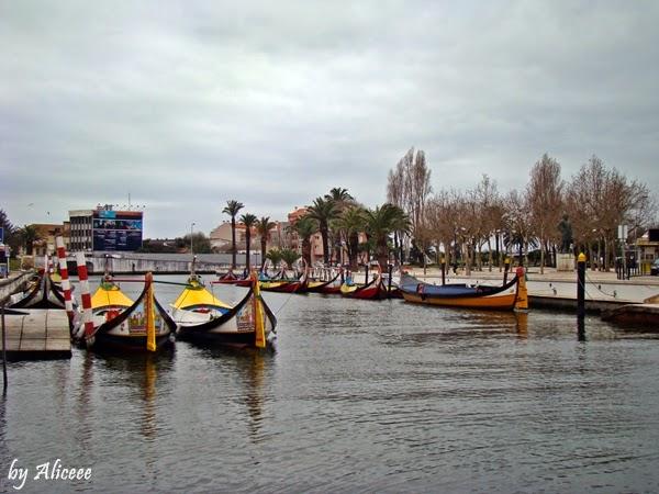 canale-portugaliaro-portugalia