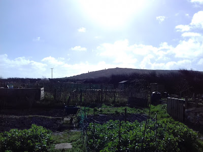 St Ives Cornwall Allotment - Penwith Hills