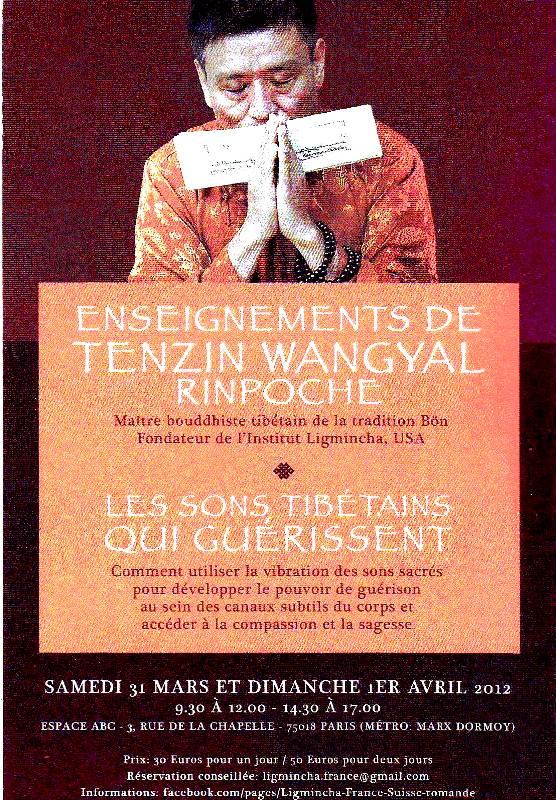 Miroir du dharma enseignements de tenzin wangyal rinpoche for Miroir du dharma