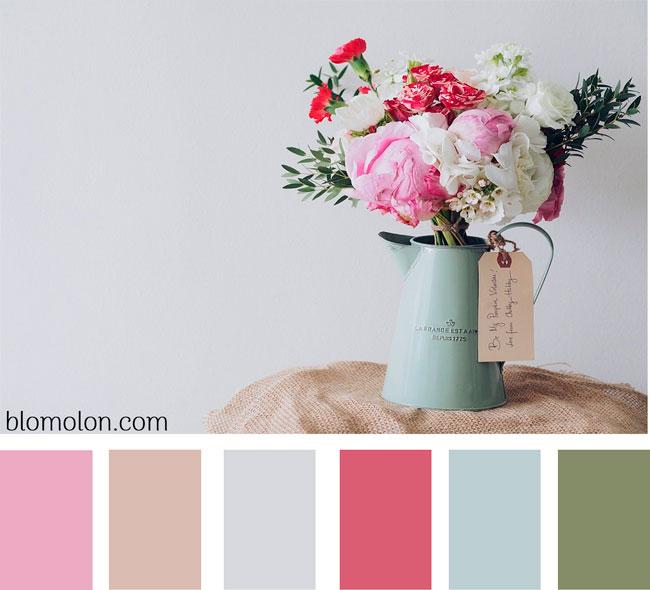 paleta-de-colores-imagen-5