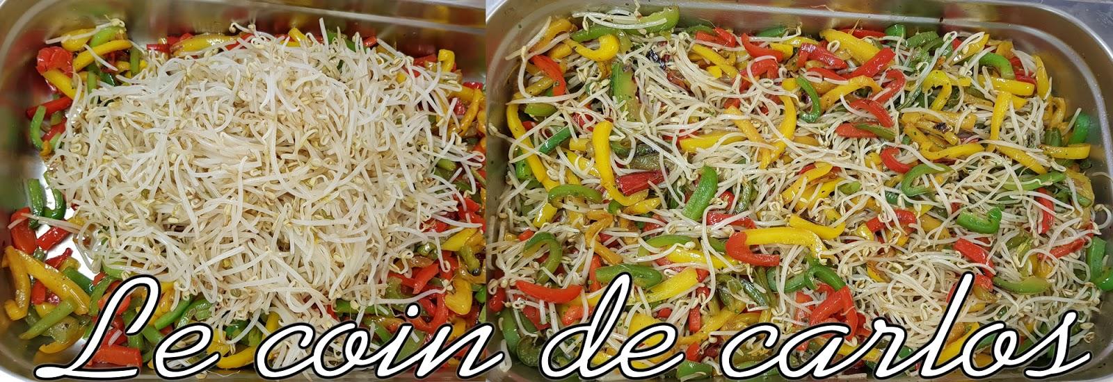 Le coin de carlos wok aux poivrons et pousses de soja - Cuisiner des pousses de soja ...