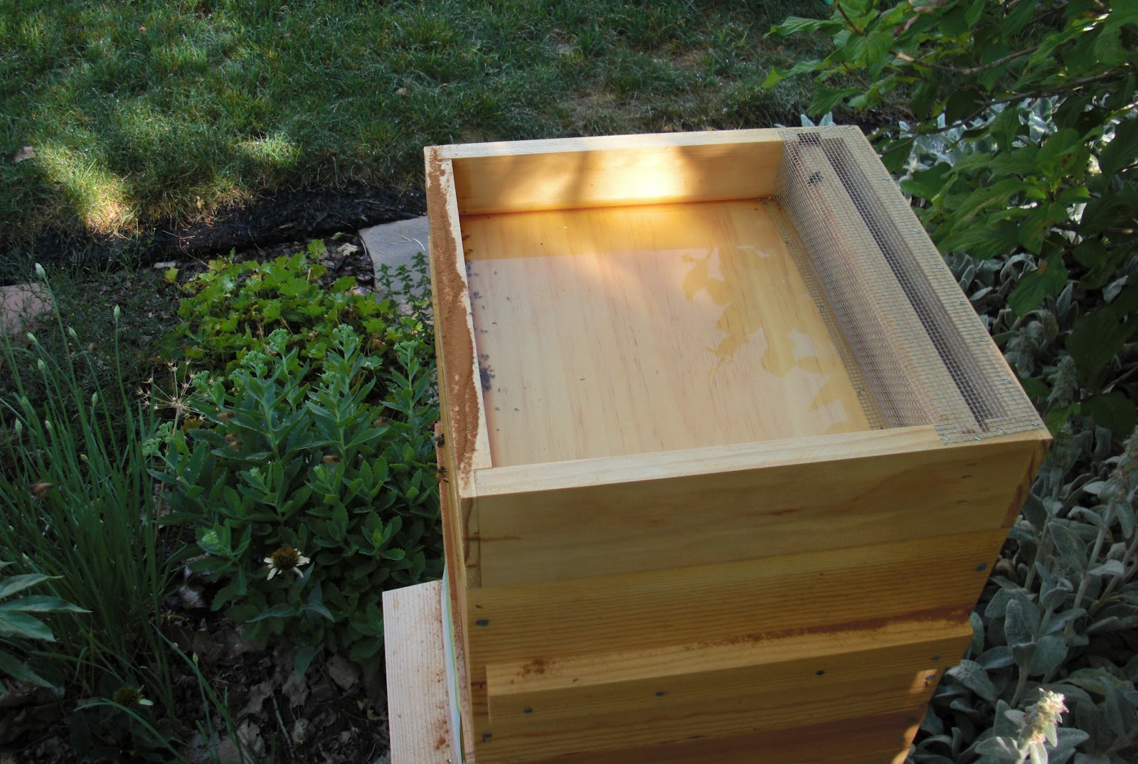 Backyard Bee Hive Blog: How to use a Hive Top Feeder: Part I
