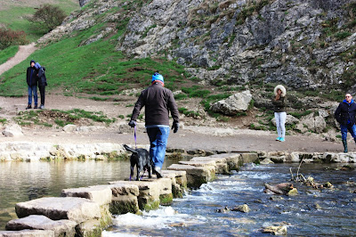 Photo of Neil walking Liggy over the stepping stones