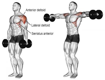 Mass-Building Shoulder Workout