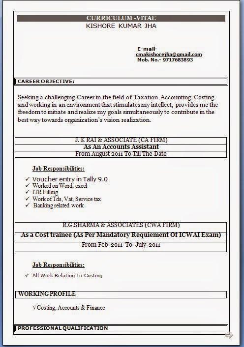 Accounting Resume Format Free Download