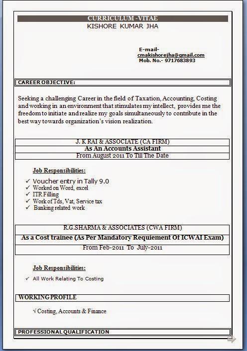 Accounting Job Resume Format