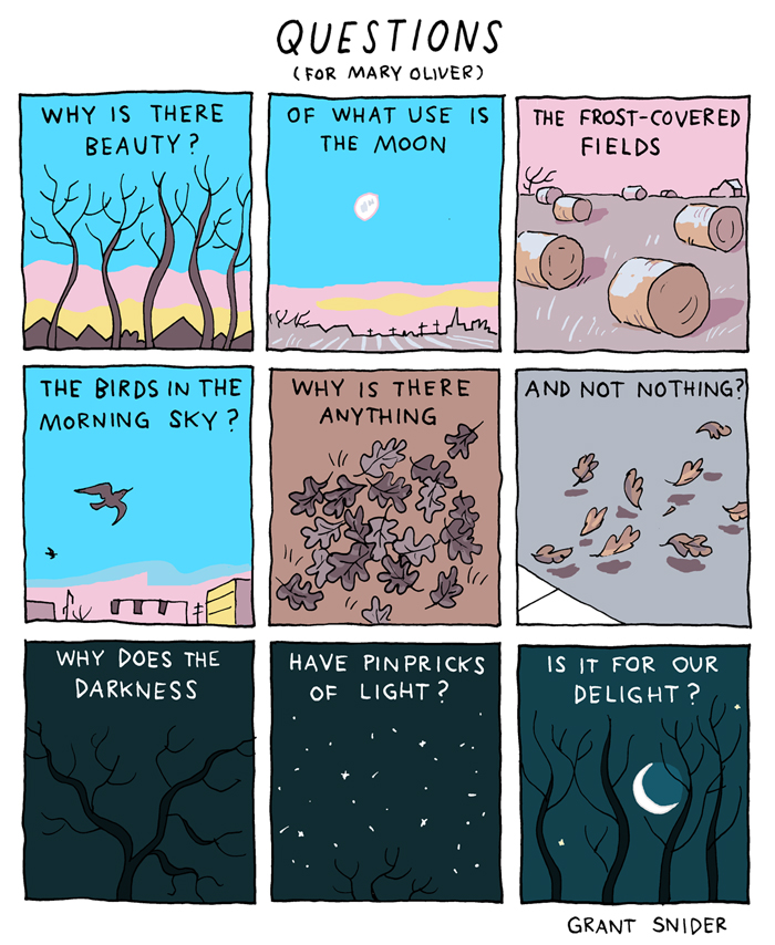 Questions (for Mary Oliver)