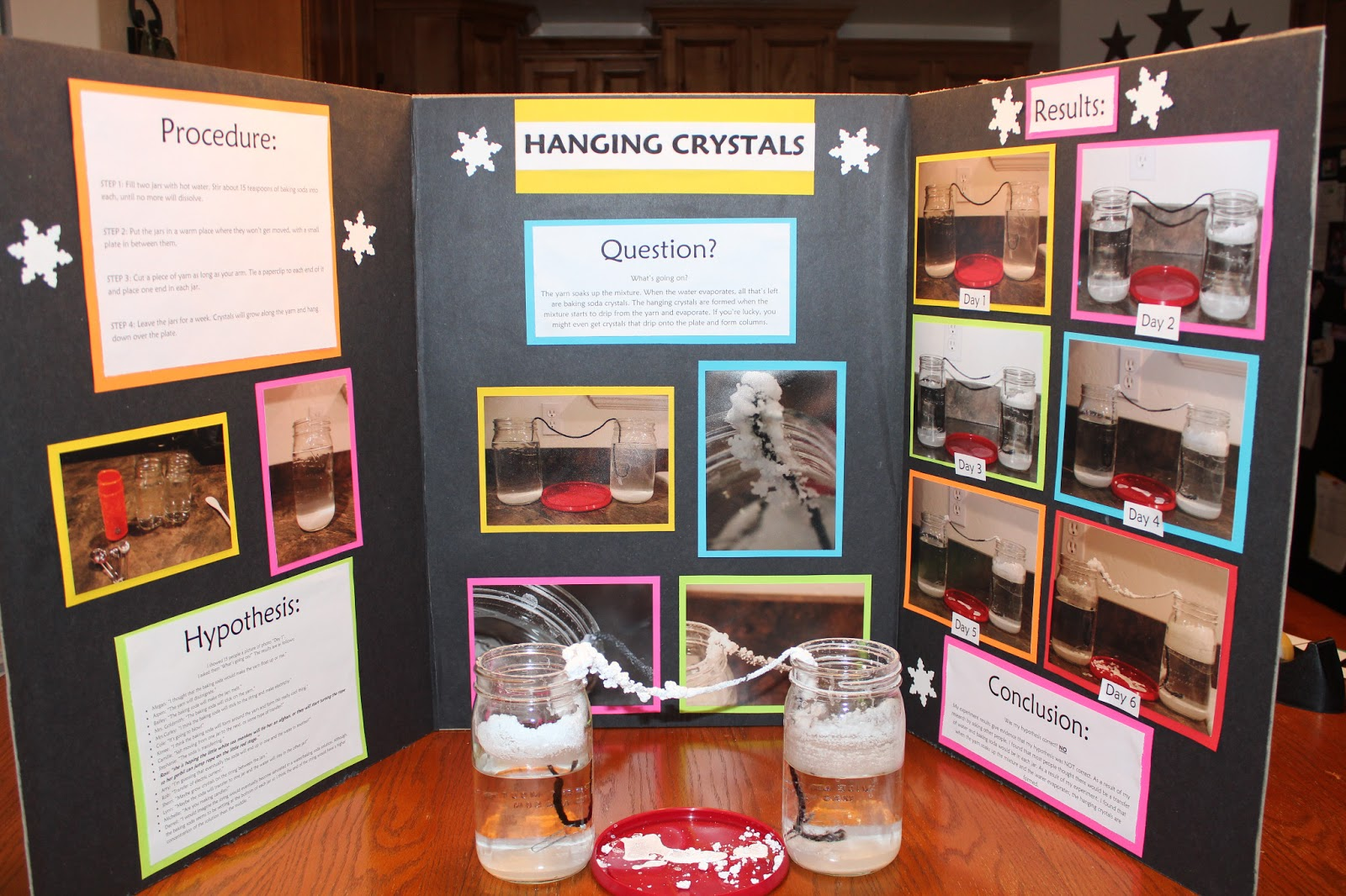 The Manwarings Kaylee S 5th Grade Science Project