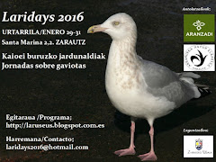 THE LARIDAYS 2016 PROGRAMA / EGITARAUA / PROGRAM