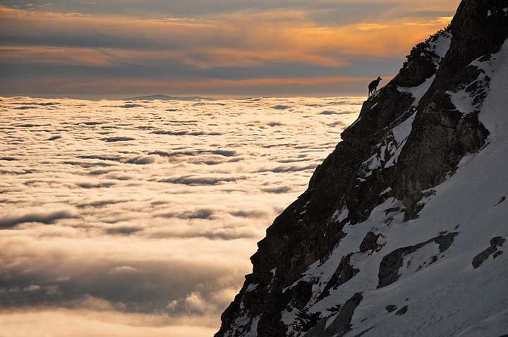 bulut ve dağ manzaralı kış resimleri