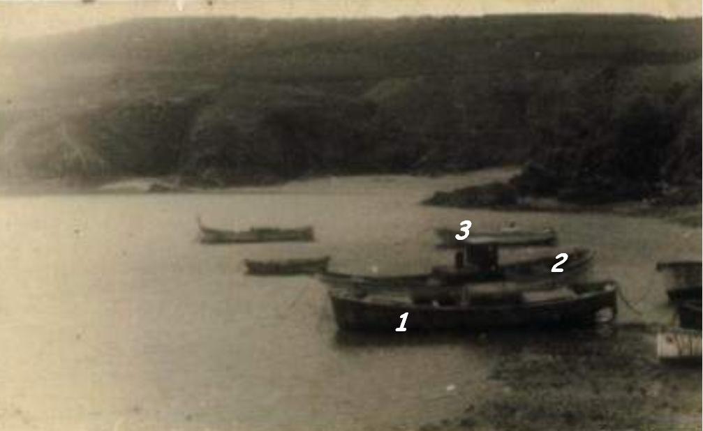 La lobita en cuatro - 3 7