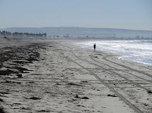 Gravel Beach Silver Strand