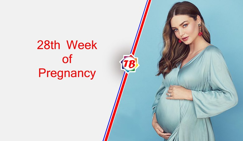 28th Week of Pregnancy