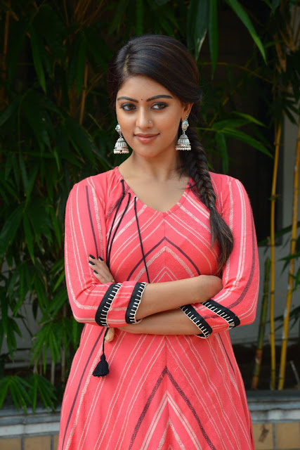 Anu Emmanuel at Majnu Success Meet