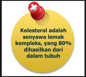 peluruh kolesterol, kolesterol, trigliserida, tanaman peluruh kolesterol, resep alami peluruh kolesterol, peluruh kolesterol dengan kubis dan belimbing, turunkan trigliserida kolesterol pakai herbal, tanaman herbal berkhasiat mengobati kolesterol, tanaman herbal menurunkan kadar kolesterol, resep tanaman peluruh kolesterol dan trigliserida, tanaman herbal peluruh kolesterol