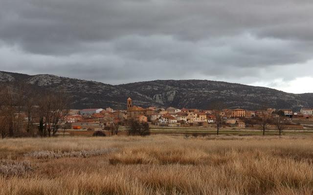 Pueblo de Gallocanta y las  grullas