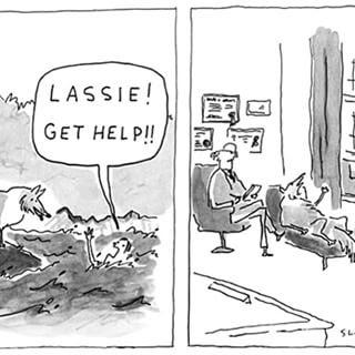 Lassie, vá buscar ajuda!