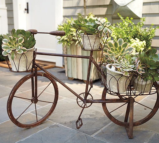 This vintage bicycle makes for the perfect plant holder.