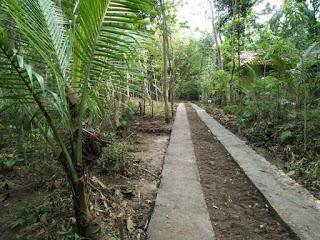 Tanah Dijual Butuh Uang Kulonprogo di Karangsari Dekat Bandara Jogja 5