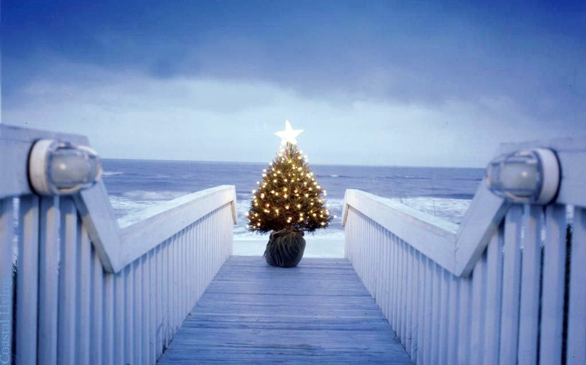 Home Made Merry Christmas Tree Hd Images Photos Wallpapers