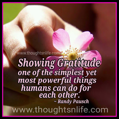 gratitude quotes  Inspirational And Motivational Quotes-