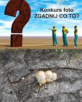 http://misiowyzakatek.blogspot.com/2014/10/zgadnij-co-to-czyli-zabawa-foto-cz-7.html