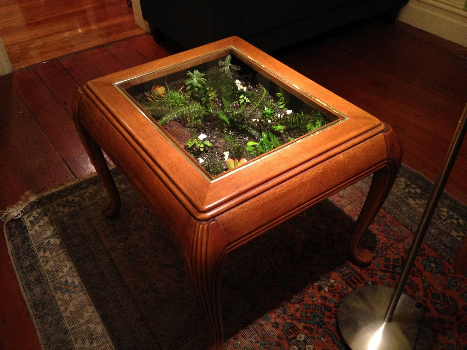 - The Fern And Mossery: Coffee Table Terrarium