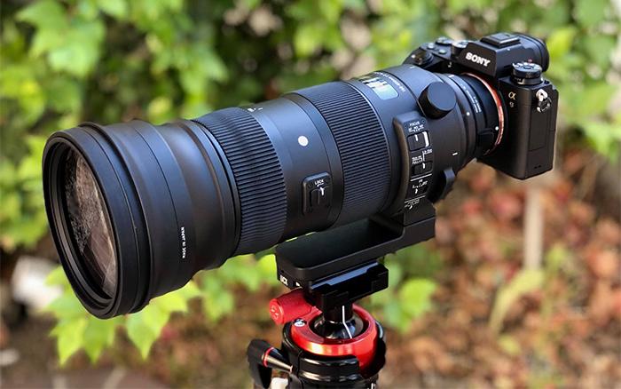 Объектив Sigma 150-600mm f/5-6.3 DG OS HSM Sport в связке с Sony A9