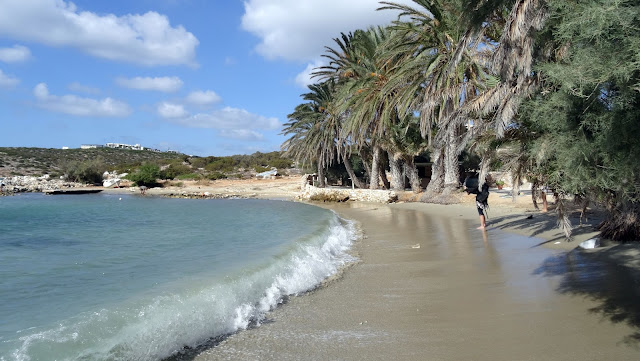 paros plage Agia Irini
