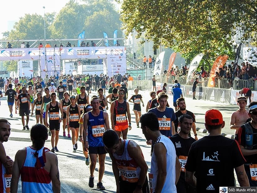 Maratona de Santiago - Diário de Bordo Chile: 8 dias em Santiago e arredores