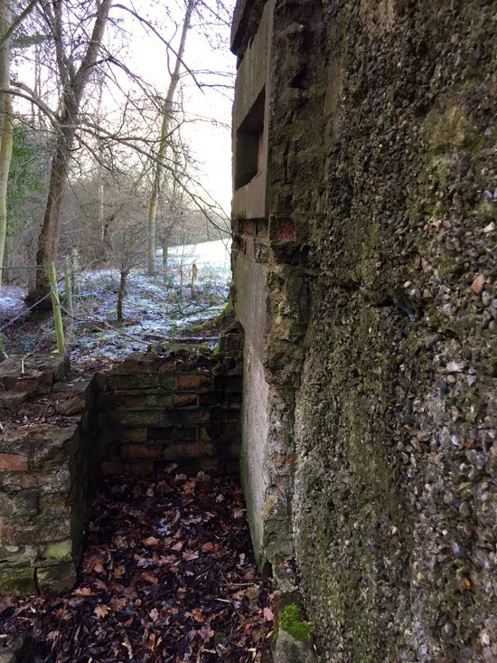 Photograph of The type-24 pillbox in the grounds of Queenswood School, North Mymms Image courtesy of Dr Wendy Bird, Archivist at Queenswood School