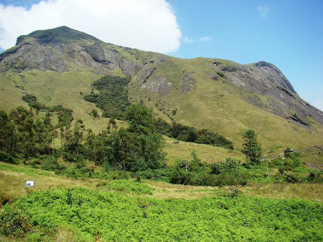 Eravikulam National Park  Munnar Hill Station Kerala Pick, Pack, Go