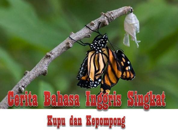 Cerita Bahasa Inggris Singkat, Kupu dan Kepompong