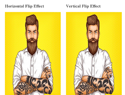 Flipping Effect using Css3