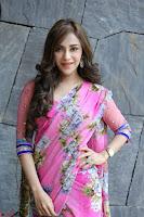 Angela Krislinzki Rogue Movie Fame Telugu Actress in Saree Backless Choli 132.JPG